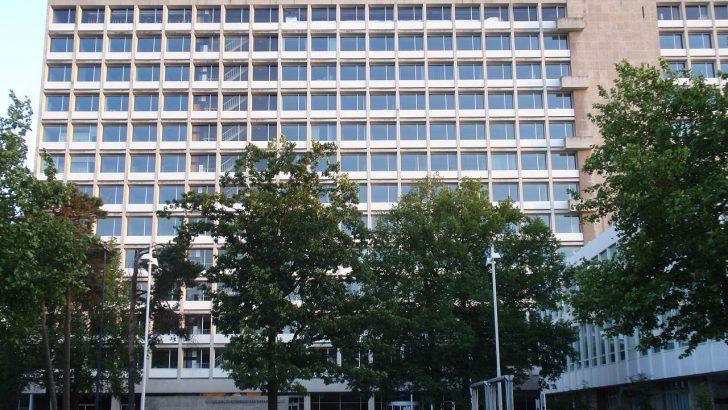 Đại học Tilburg – Nơi sở hữu những chương trình cử nhân chất lượng top đầu Hà Lan