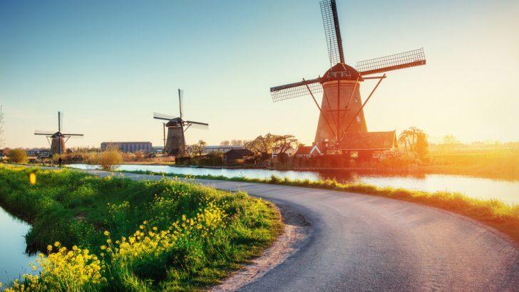 Chương trình học bổng của Đại học Wittenborg Hà Lan có gì đặc biệt?